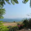 Nereo- Stefania – Viaggio Israele, Palestina, Terra Santa