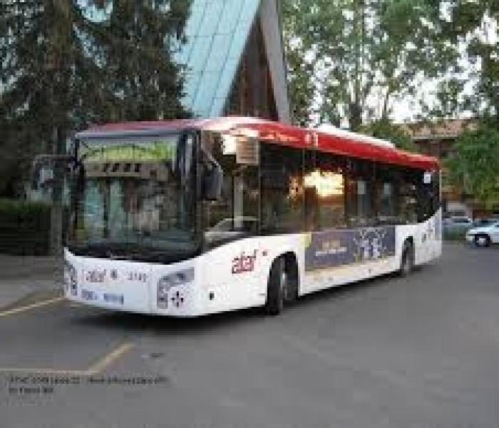 Camin: Bus 15, per il centro 1km a piedi