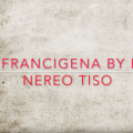 VIDEO FRANCIGENA 2019 in bike by Nereo Tiso